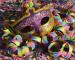 carnaval-blog-canecas-personalizadas-24-horas-4